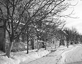 Petrovec_in_the_snow_CRW_2024.jpg